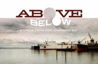 AB Website header 896x595 04